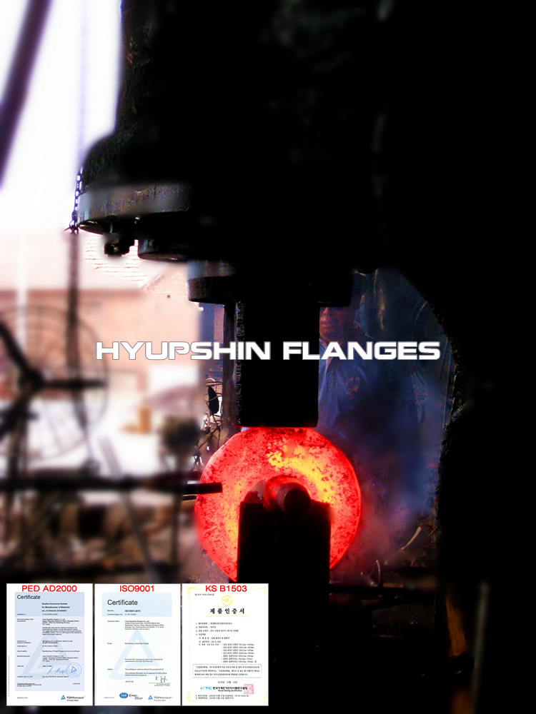 Flanges Forging