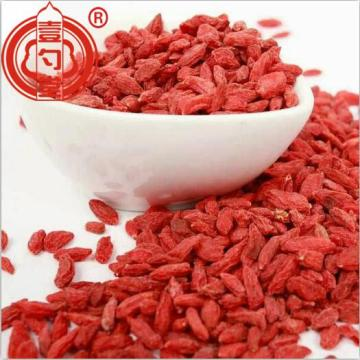 Dried Red Berries bulk Goji Berry