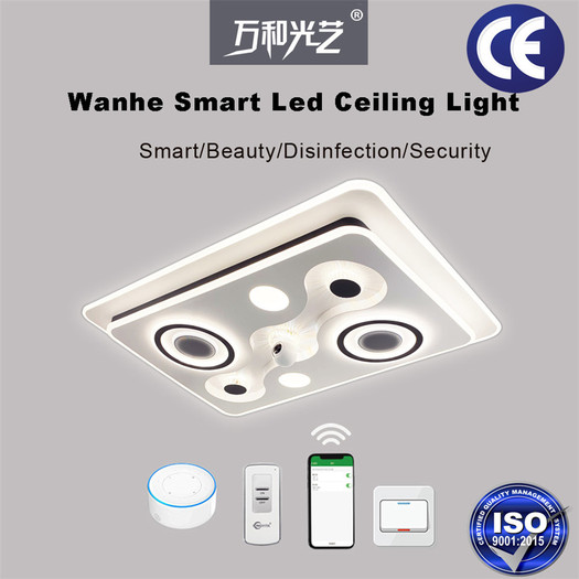 Smart Voice Control Living room Ceiling Lamp