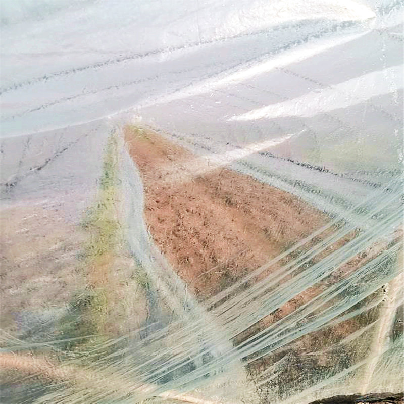 Biodegradable greenhouse plastic film (6)