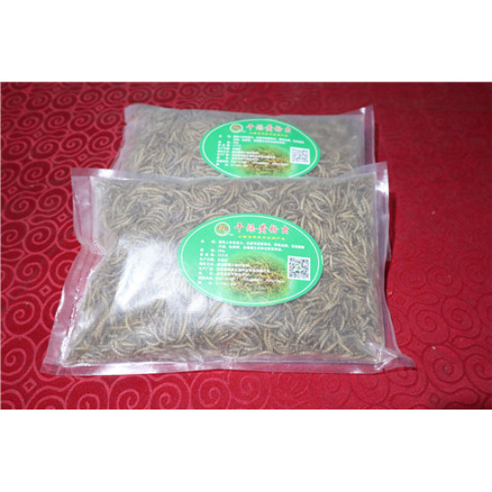 Reptile Food Dried Mealworm