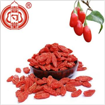 Conventional Goji Berry 380 B Grade Dried Goji