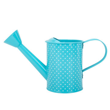 Small Metal Indoor Plant Watering Can Child