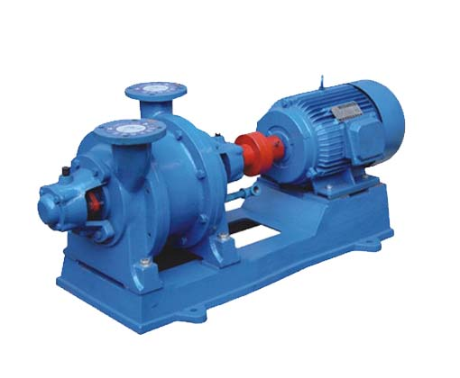 2BE water ring vacuum pump and compressor 4