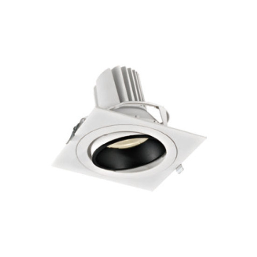 Bright Star Powerful 38W LED Downlight