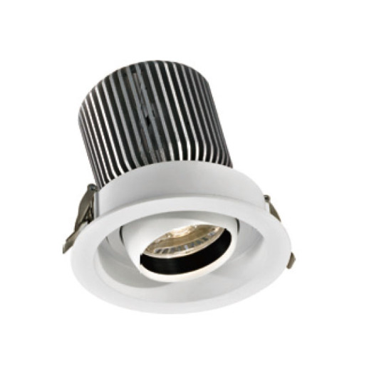 Round Shape Indoor 30W LED Downlight