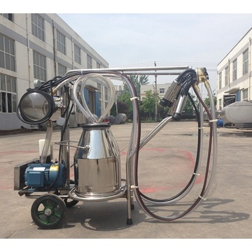 Gasoline milking machine for cows