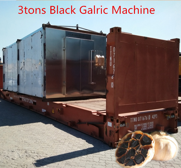 black garlic machine 11