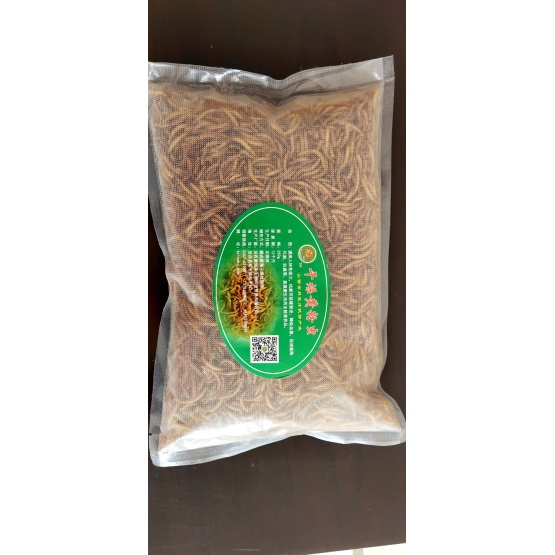Dried Mealworms which if full of Protein
