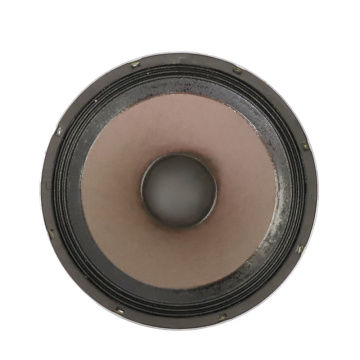 10inch  PA high quality Stage speaker