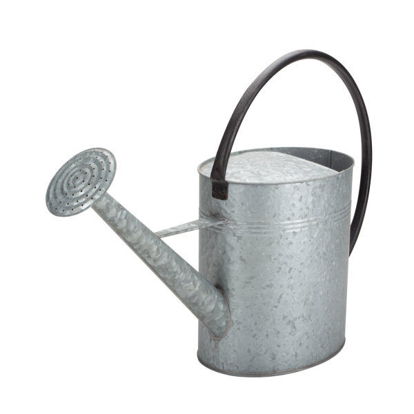 Stardew Valley Watering Can Vintage for Garden
