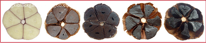 black garlic seed