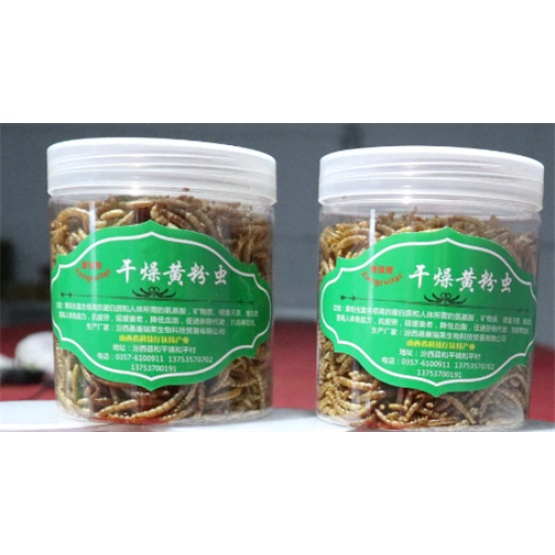 25mm 100% Pure Natural Freeze Dried Mealworms