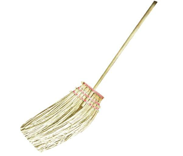 Bamboo Branch Broom