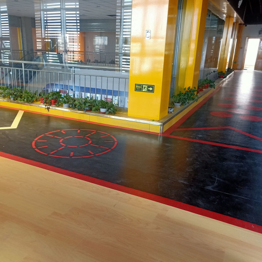enlio PVC floor indoor Gym floor