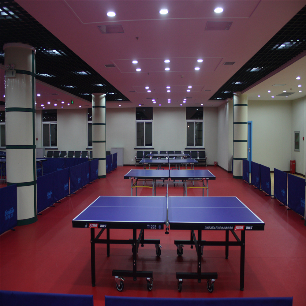 Table Tennis11