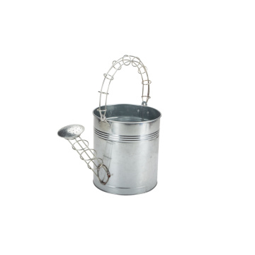 Decorative  Watering Can Home Depot for Plants