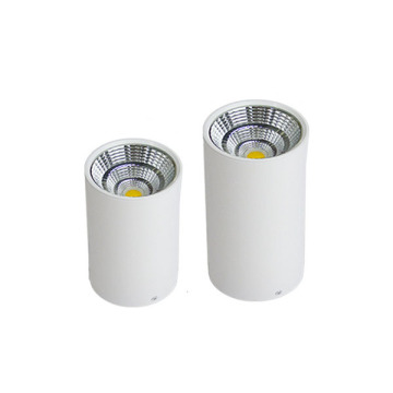 Lighting Design COB 3W LED Downlight