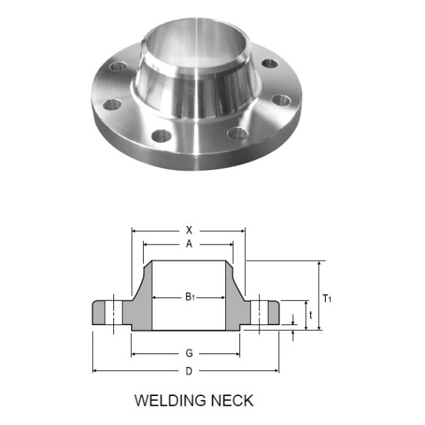 Duplex Stainless Steel ASME B16.5 Weld Neck Flanges