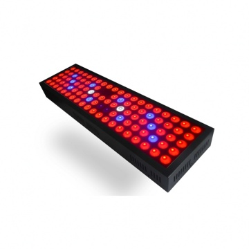 Professional Full Spectrum 65w LED Grow Light