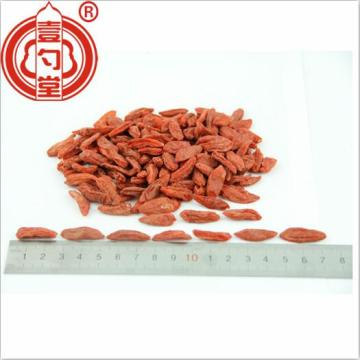Dried Gou Qi Zi Goji Berries red fruit