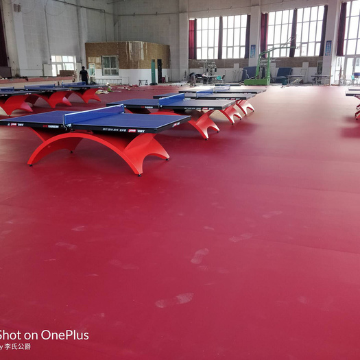 Anti-slid PVC table tennis floor Weaving Pattern