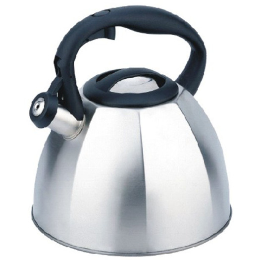 Water kettle with auto open handle
