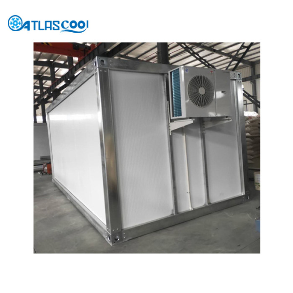 Portable cold storage room for frozen chicken meat