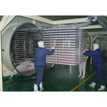 vacuum freeze drying