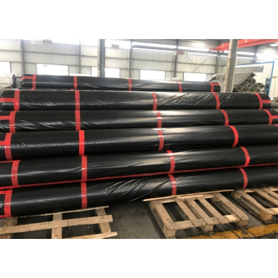 Retaining Walls Polyester Geogrid
