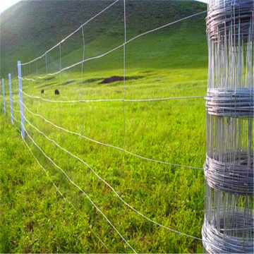 Galvanized cow Field Fencing