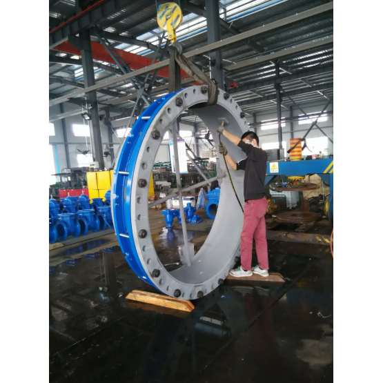 DN700-DN2000 large diameter c/w end ring flange adaptor