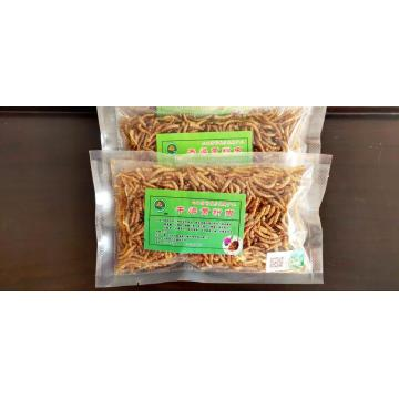 pet feed of dry yellow mealworm