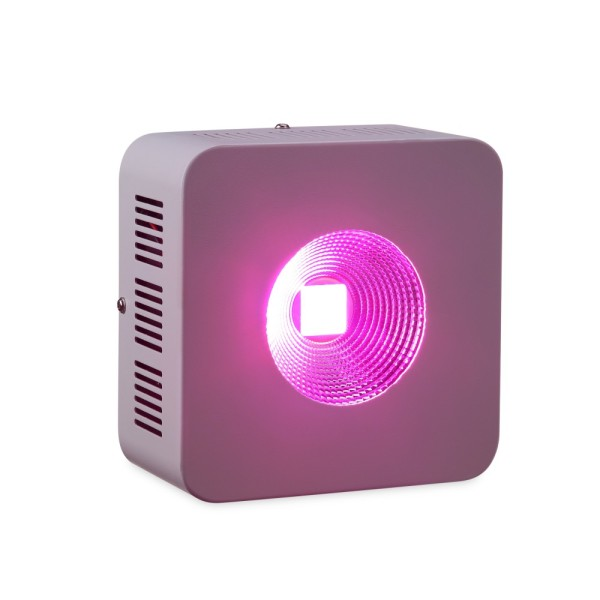 200W COB Grow Light LED Grow Lights for Indoor Plants