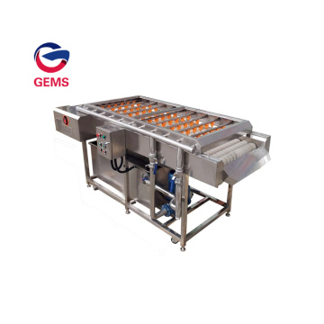 Potato Washing and Peeling Machine Tomato Washing Machine