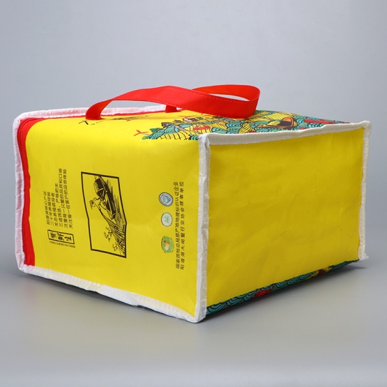Food Freezer Insulated Cooler Bag