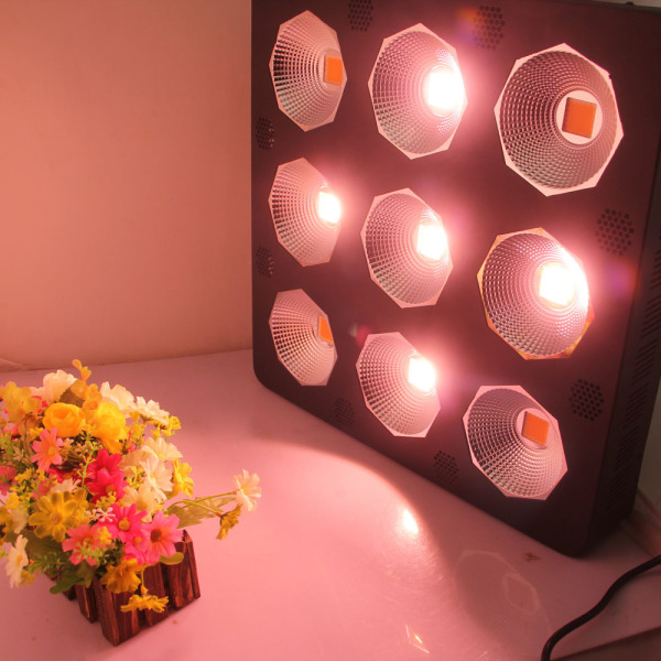 China Suppliers Full Spectrum Crees LED Grow Light Hydroponic