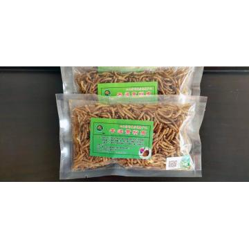 best turtle feed mealworm