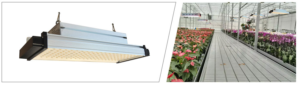 led grow light spectrum
