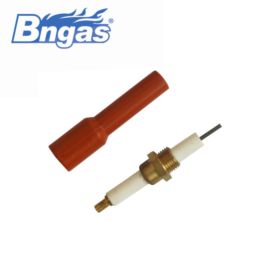 High quality ceramic electrode with silicone plug