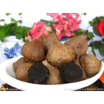 Solo Black Garlic From Fermented Black Garlic Machine