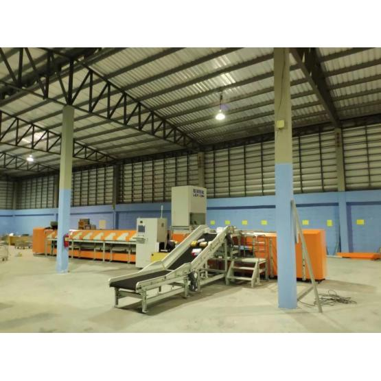 Automaic Logistic Sorting Machine