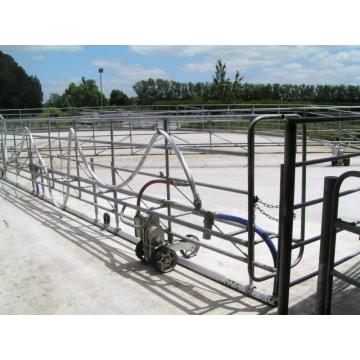 fast speed milking parlor
