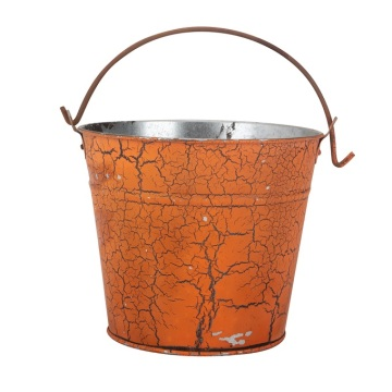 Halloween Festival  Custom Bucket