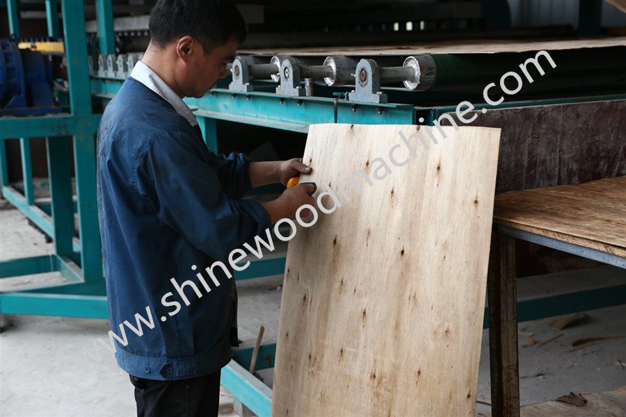 Core Veneer Dryer