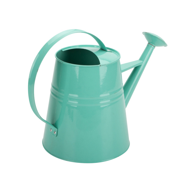 Toy Watering Can Cartoon Cheap