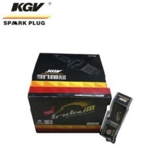 Small Engine Double Iridium Spark Plug D-BR8HIX