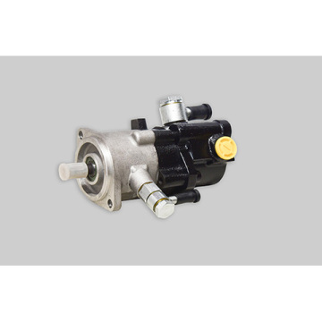 ZXZDB series steering brake compound pump