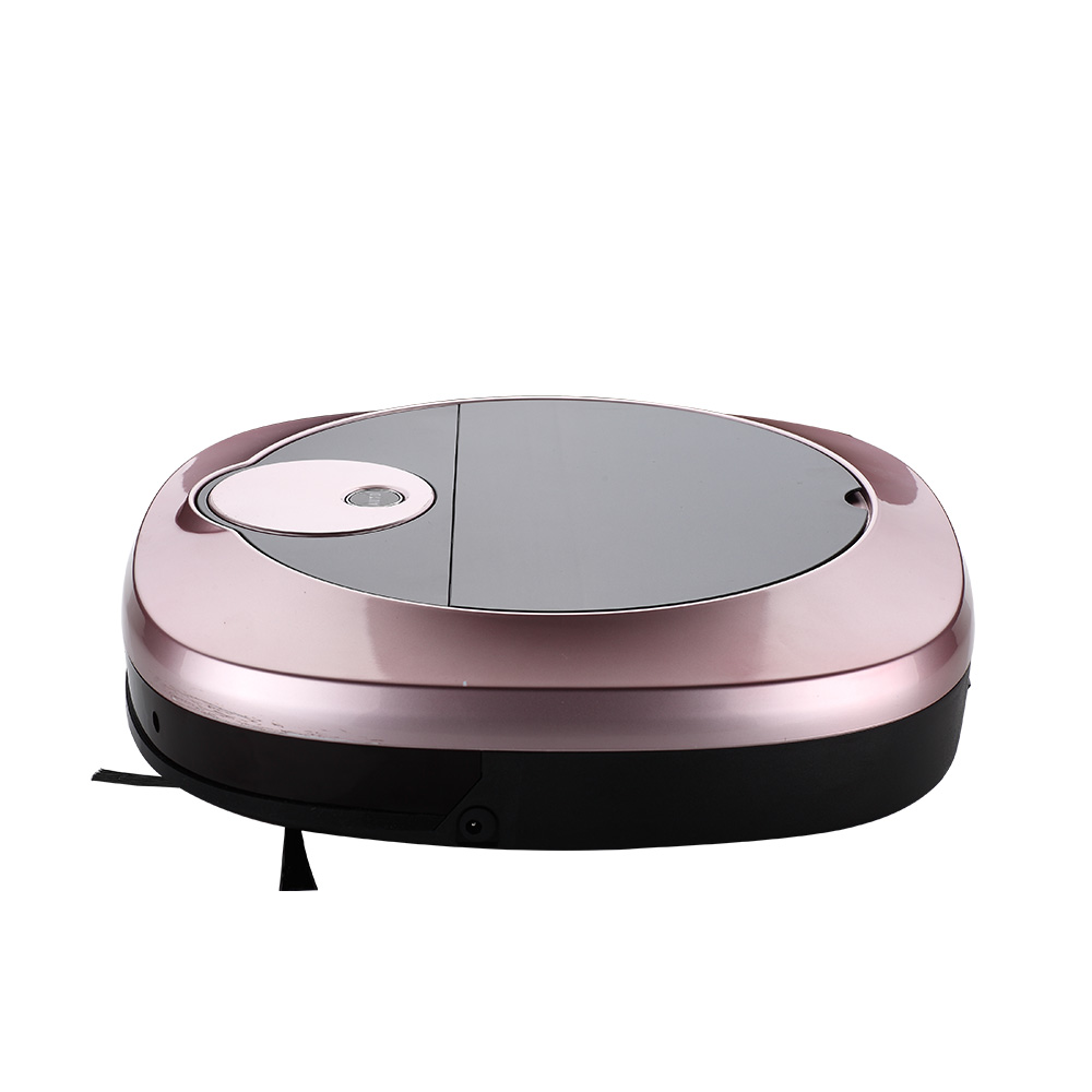 Remote Control Mopping Vacuum Robot (2)