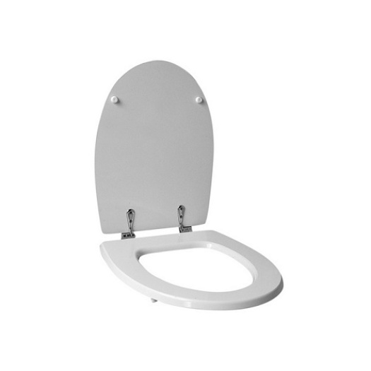 Sanitary Ware Plastic Toilet Seat Cover Mould